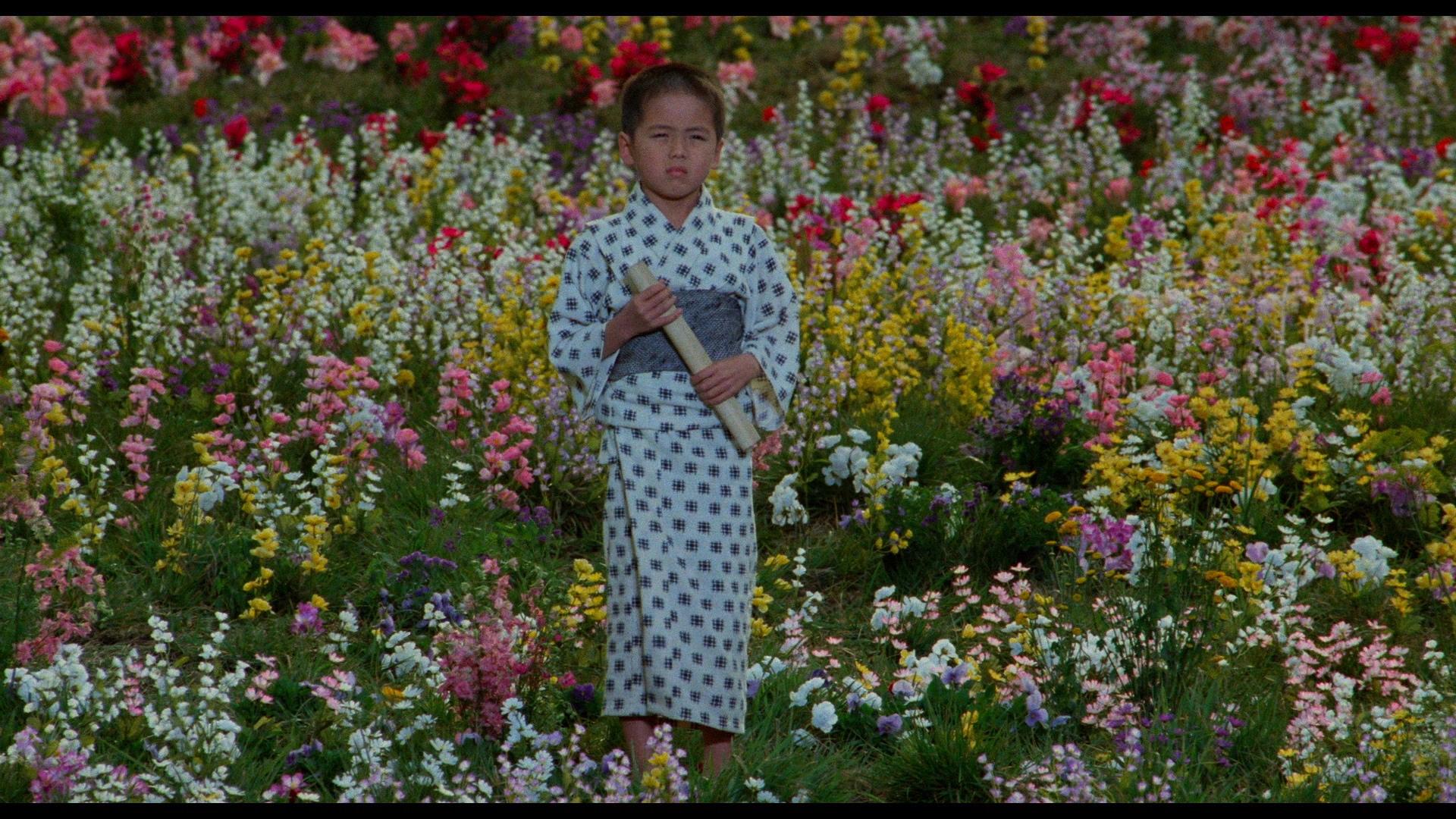 SONHOS AKIRA KUROSAWA BAIXAR DE FILME