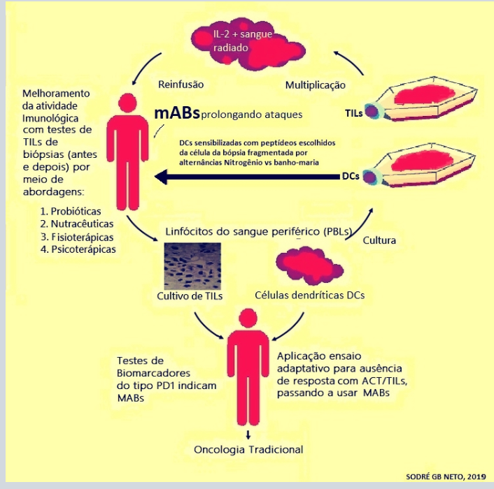 Campeao  immuno