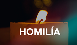 HOMILIA Diária