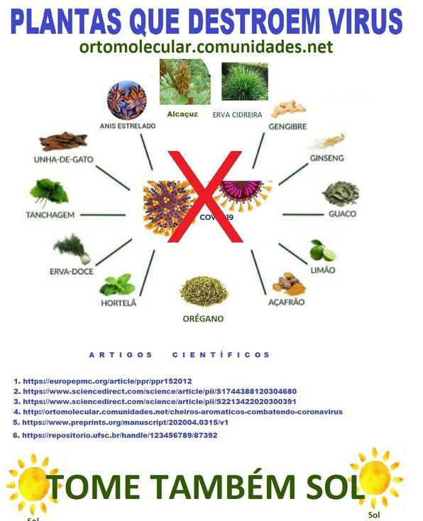 Plantas que matam virus